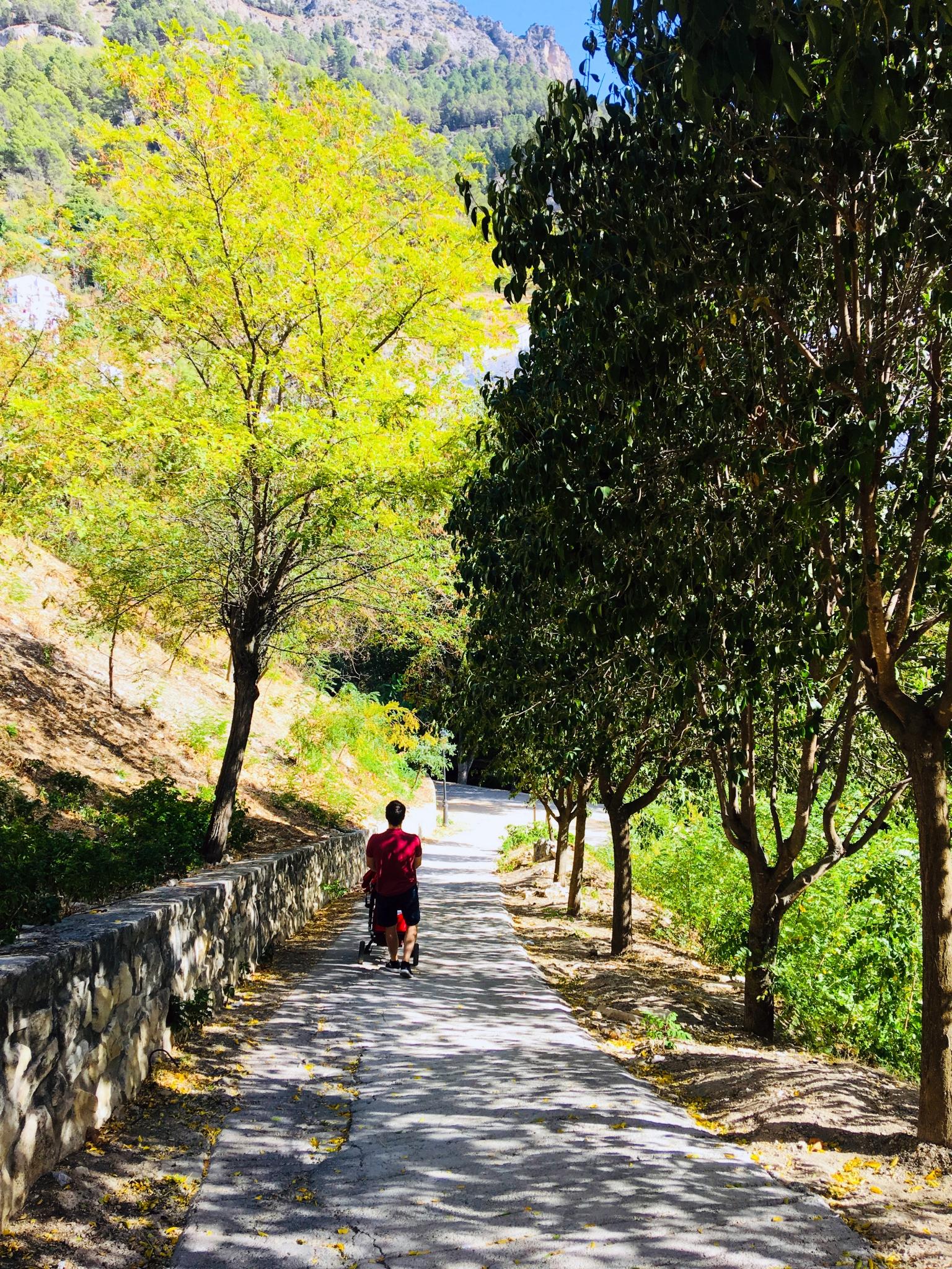 paseo fluvial del río cerezuelo.