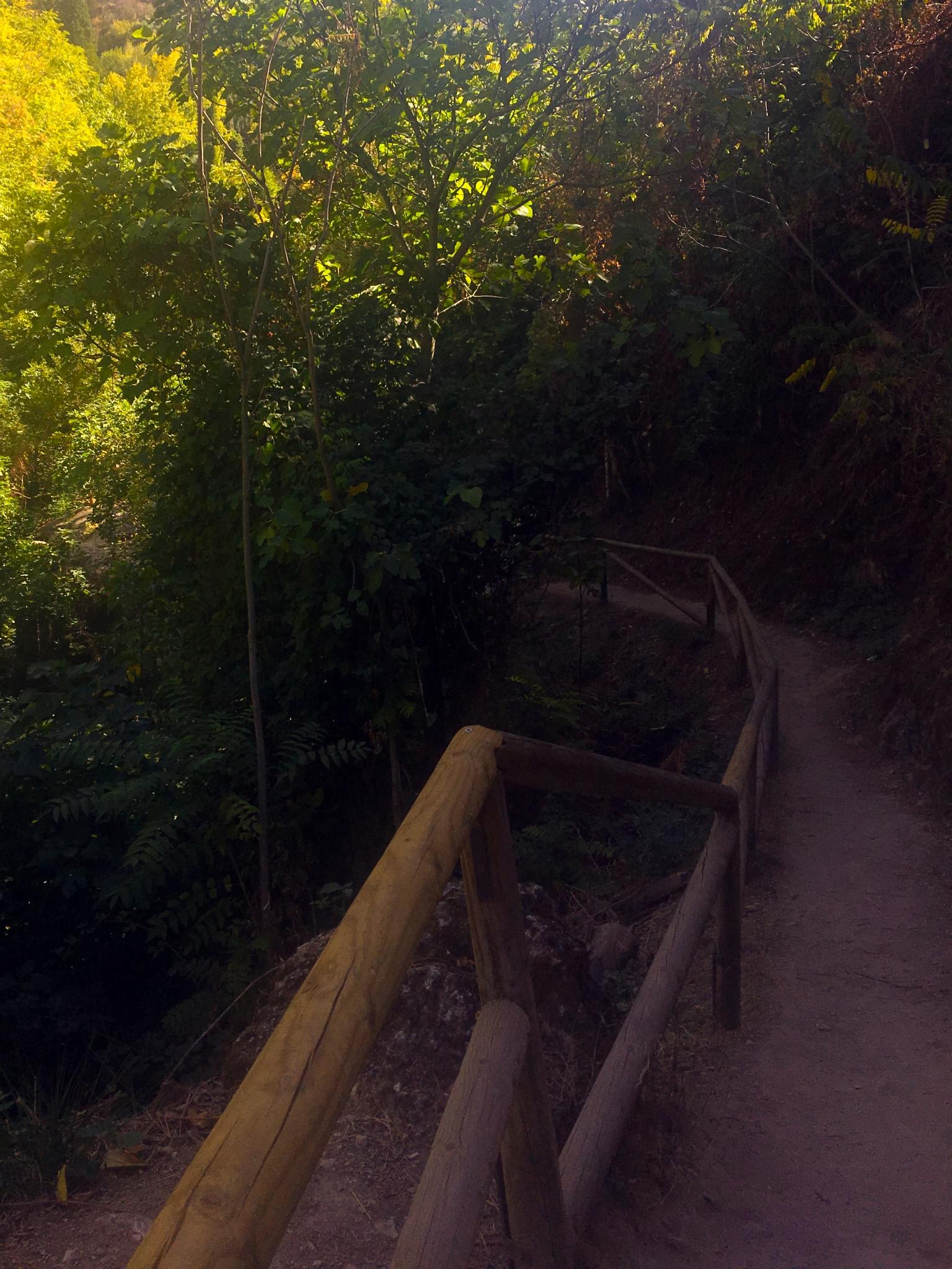 sendero y rutas a pie por cazorla
