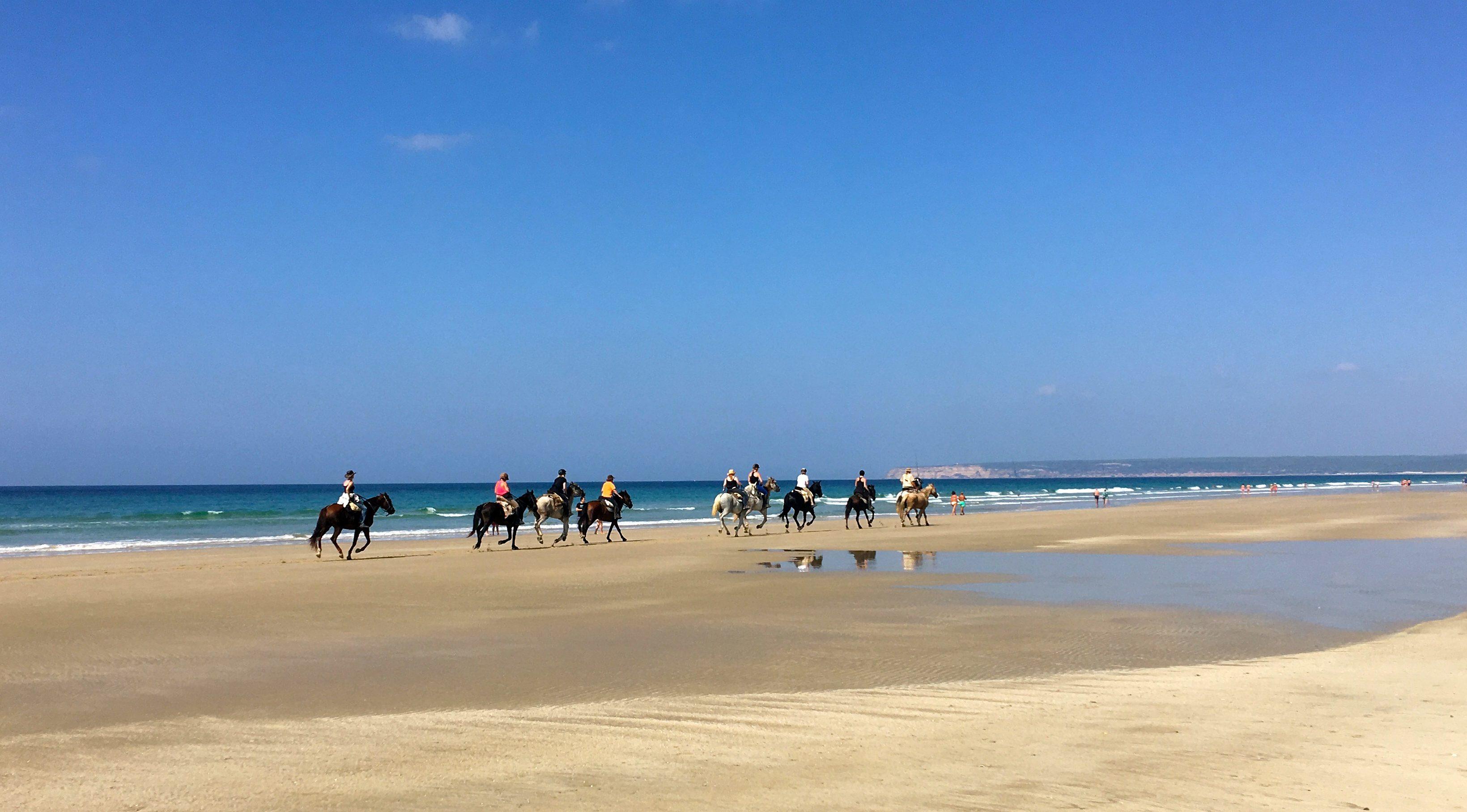 paseos y carreras de caballo en cádiz